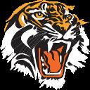 Padstow tiger head 128x128